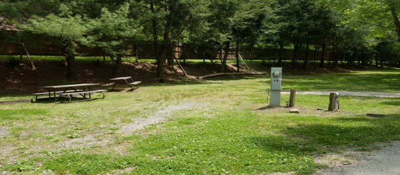 Campsites at Ela Campground near Cherokee NC